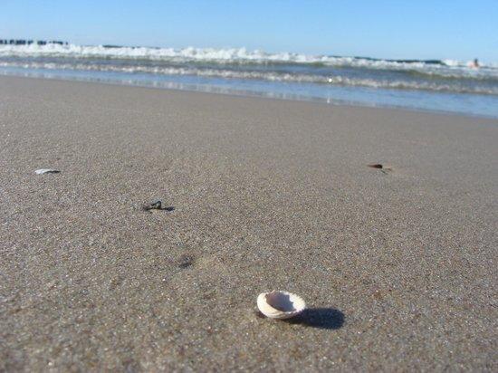 Hel: plaża