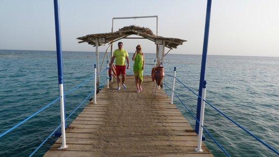 Coral Beach Resort: Пантон