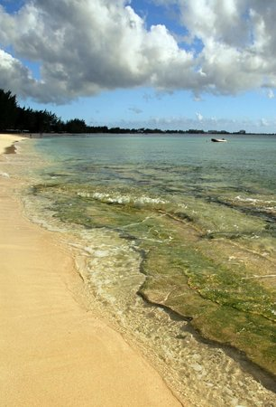 Christopher Columbus Condos: Beach