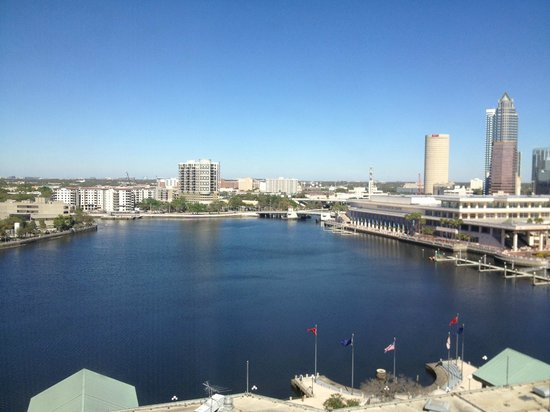 Westin Tampa Harbour Island : View from our 12th floor room.