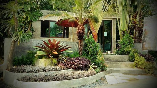 Pallada Bromeliads Garden and Resort