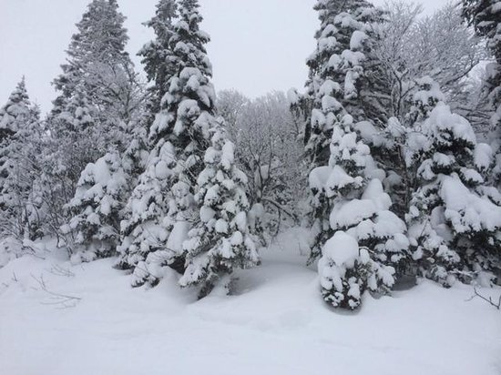 Marble Mountain: Lots of snow most of the time.