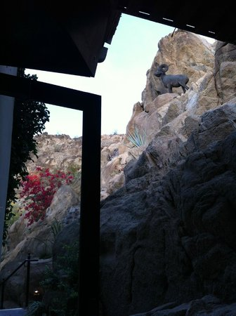 La Quinta Cliffhouse Grill and Bar : View from our outdoor seat