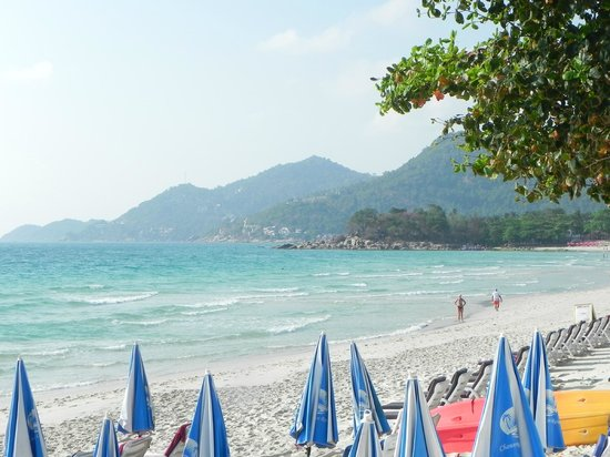 Chaweng Cove Beach Resort : Spiaggia