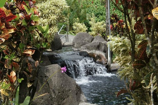 Arenal Kioro Suites & Spa : Hot springs- I spent hours here.