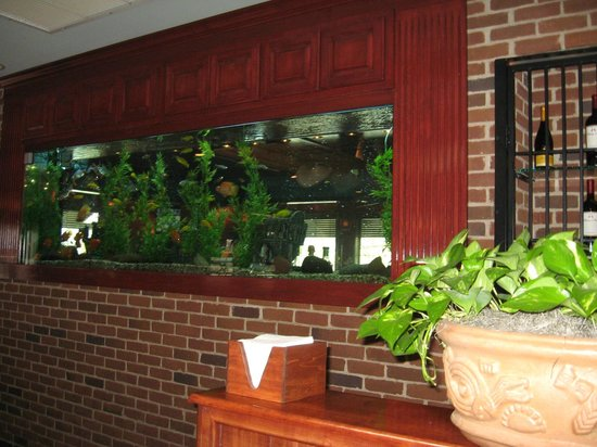 Cheddar's Scratch Kitchen: Decorative fish tank