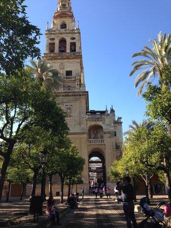 Moschee-Kathedrale (Mezquita de Córdoba): Interno moschea