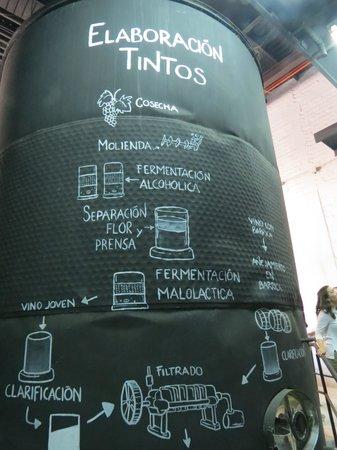 Bodegas de Santo Tomas : Explicacion