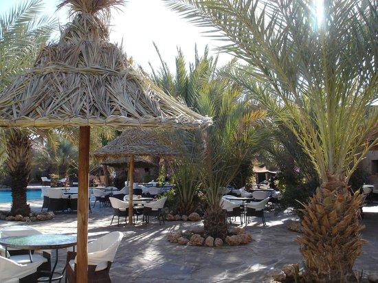 Kasbah Hotel Xaluca Arfoud: pool area-too cold in late january