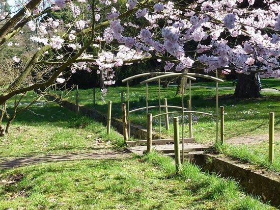 Arboretum de la Vallée-aux-Loups: petit pont sur le rû