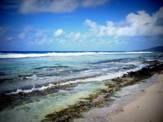Island Eco Tours - Day Tours : Motu Maeva