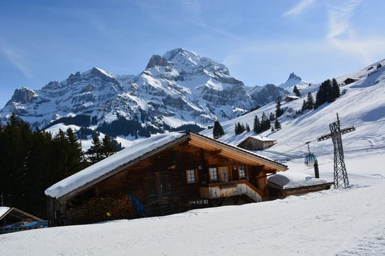 Adler Adelboden: On the ski slopes