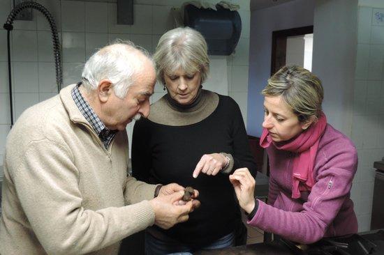 Love-Umbria Tours: Examining a noble truffle