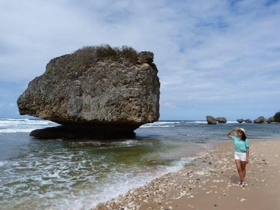 Bathsheba Beach: batsheeba