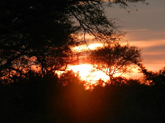 Lion Sands River Lodge: Sunrise on the African Plains