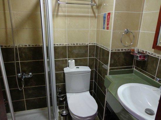 Deluxe Golden Horn Sultanahmet Hotel: La salle de bain trés propre et fonctionnelle mais trop petite wc non séparé !