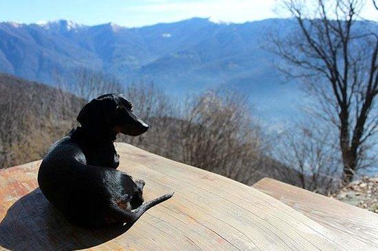 Rifugio Bugone: i cani sono ben accetti