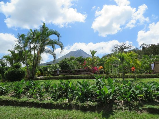 Arenal Volcano Inn: View from our room