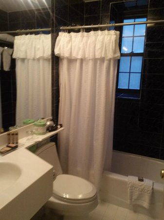 Fitzpatrick Grand Central Hotel: bathroom