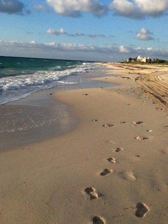 Grand Residences Riviera Cancun: beautiful beach