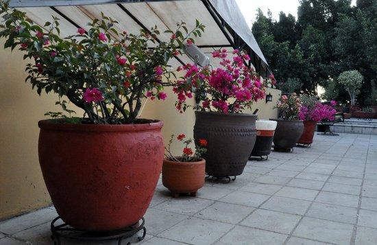 Hotel Aitana : Fra takterrassen
