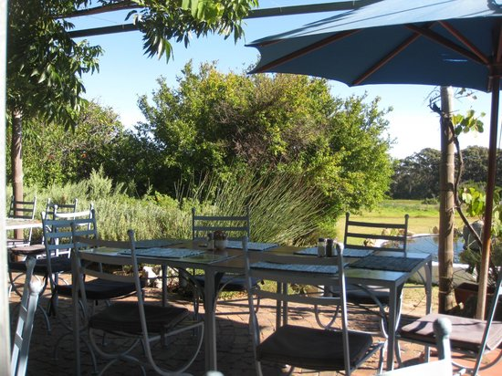 Cape Farmhouse Restaurant: View
