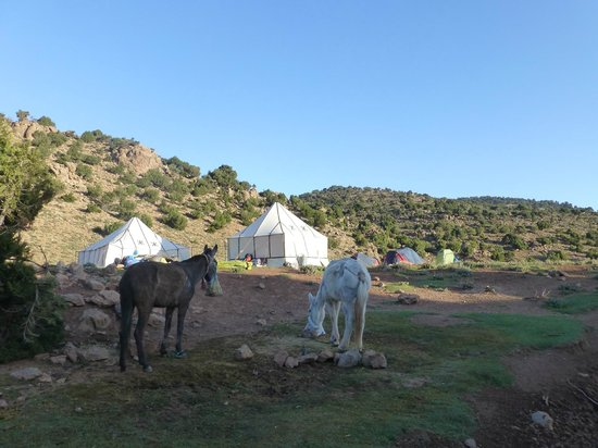 voyage maroc tripadvisor