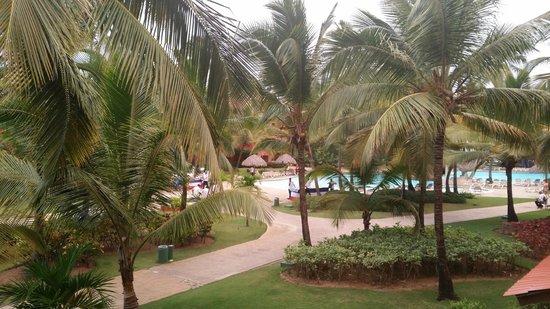 Caribe Club Princess Beach Resort & Spa : Blick aus einem Zimmer