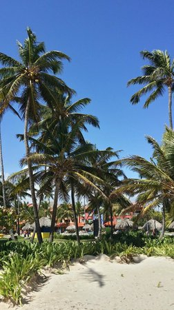 Caribe Club Princess Beach Resort & Spa : die Anlage