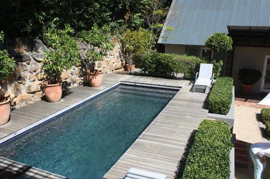 Four Rosmead: Kl. Pool im Garten