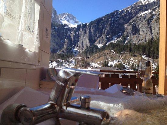 Chalet-Hotel Adler : Vue depuis jacuzzi