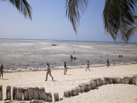 Eden Village Watamu Beach: Spiaggia davanti al villaggio in un momento di bassa marea