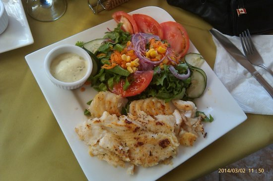 Hotel Sol Samara: Grilled fish and salad