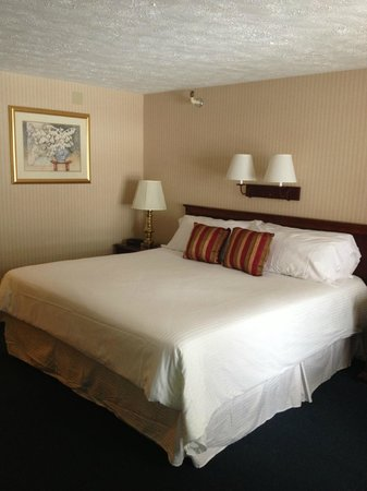 Sea View Motel: King size premium bed with duvet