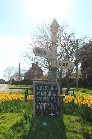 Cole Manor Tea Rooms : the sign in Bruton