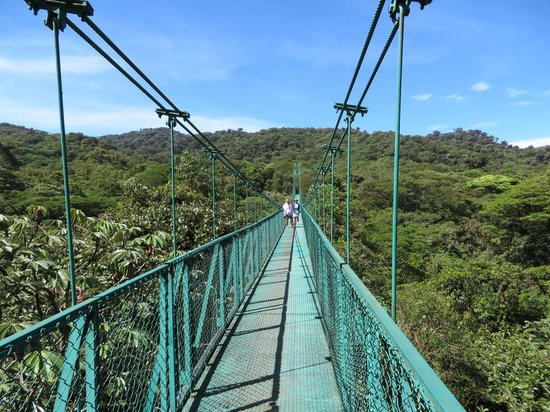 Parque Selvatura: Awesome Hanging Bridges