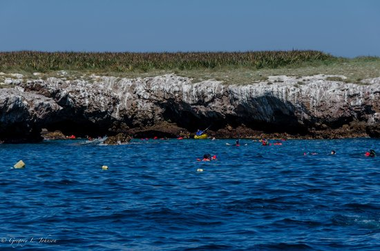"Marietas Islands: A long swim to see the ""hidden beach."""