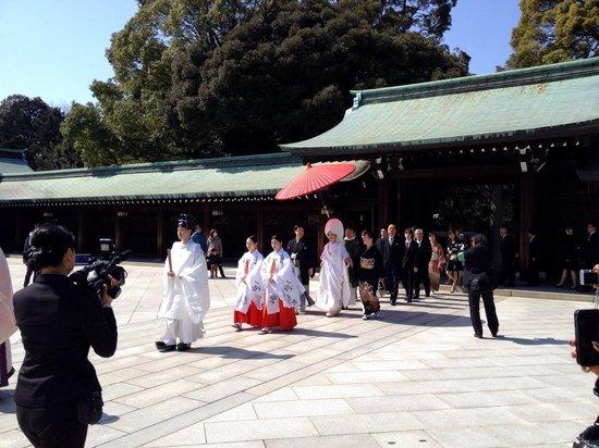 Meiji-Schrein (Meiji-jingū): A beautiful day for wedding