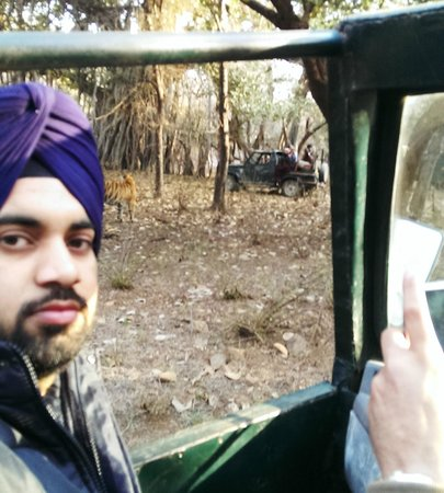 Ranthambore National Park : tiger behind me at zone 5