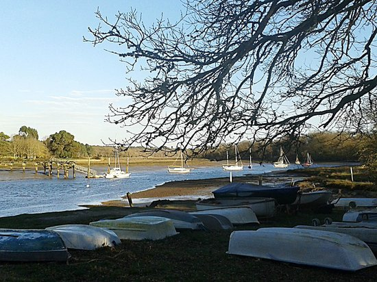 New Forest Activities : Beaulieu River