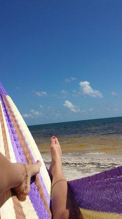 Hotel Maya Luna: Ocean front hammock