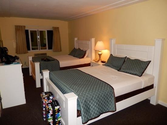 Hollywood Celebrity Hotel: chambre 4 adultes