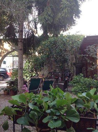 Villa Clelia Bed and Breakfast: villa Clelia