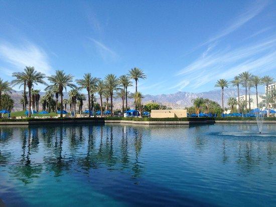 JW Marriott Desert Springs Resort & Spa: Pool view