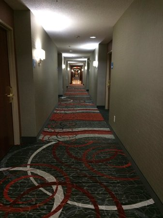 Holiday Inn Express Hotel & Suites Waterford: Hallway