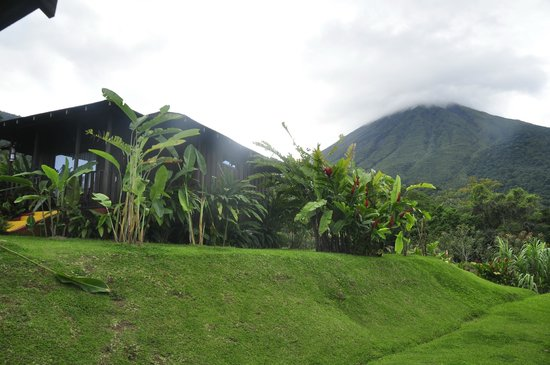 Hotel Lomas del Volcan: view from the patio