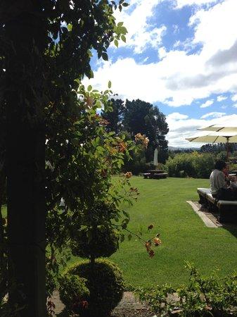 Pegasus Bay Winery Restaurant : back of restaurant