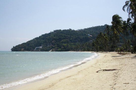 Phi Phi Island Village Beach Resort: Same beach can be beautiful at the morning and evening