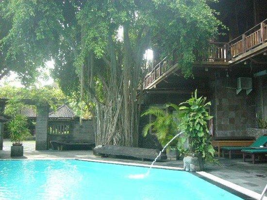 Hotel Puri Bambu: piscine + spa
