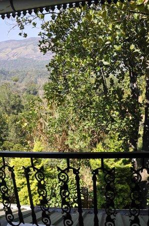 Emarald Wyte Mist Munnar: Vista desde el balcón